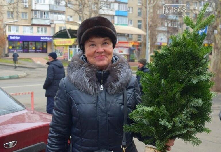 Живая или искусственная: какую ёлку выбрали жители Черноморска?, фото-2
