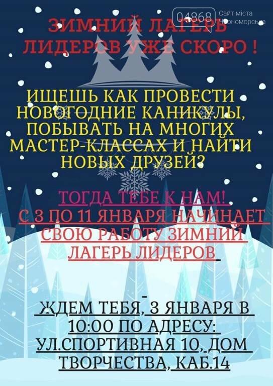 В Черноморске проходит зимняя сессия лагеря лидеров, фото-17