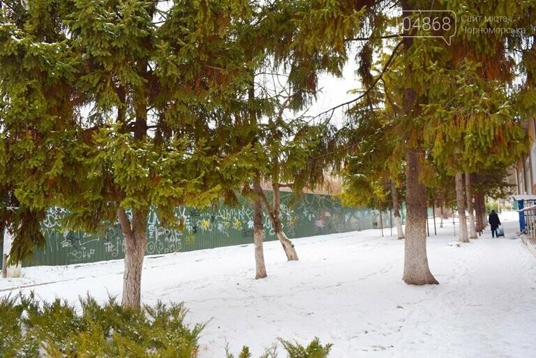 Кто и зачем заварил калитку на входе в одну из школ Черноморска? , фото-16