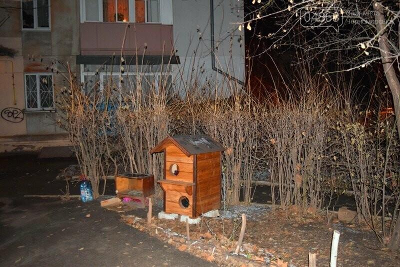 Фотофакт: в Черноморске строят уютные домики для кошек, фото-8