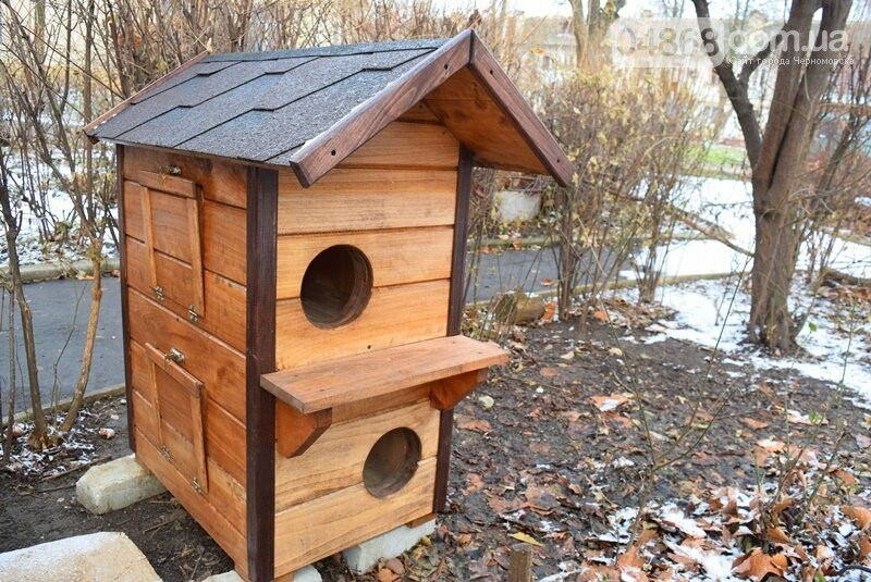 Фотофакт: в Черноморске строят уютные домики для кошек, фото-5