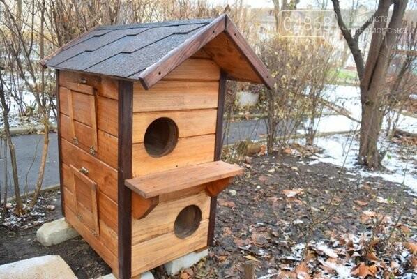 Фотофакт: в Черноморске строят уютные домики для кошек, фото-2