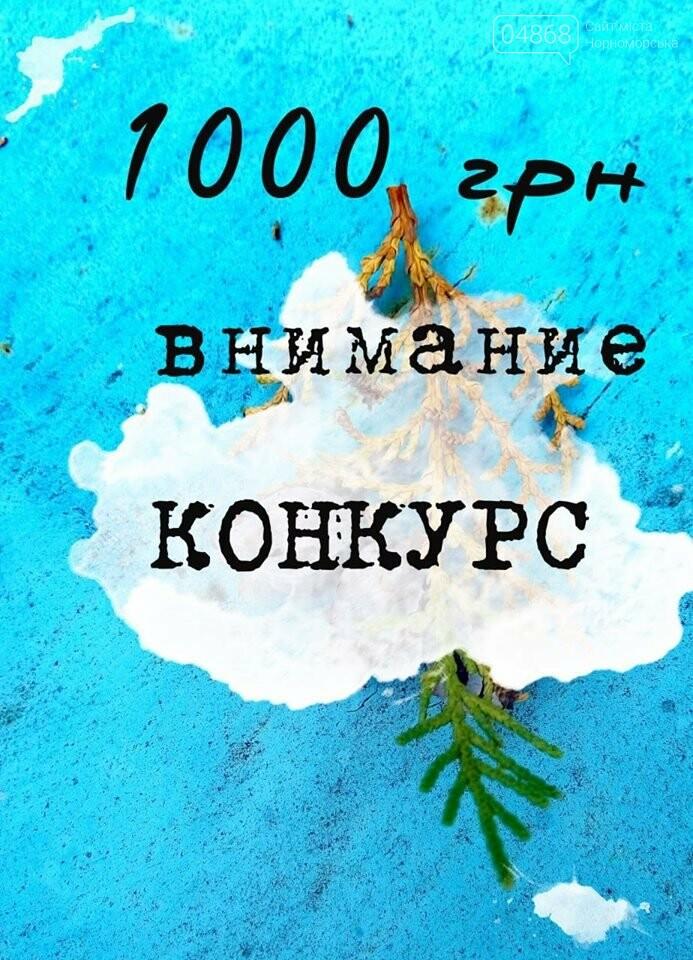 «Прикосновение к душе»: в Черноморске пройдёт поэтический конкурс, фото-1