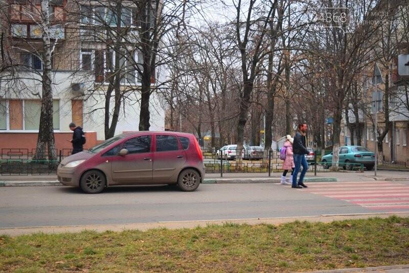 Насколько безопасны пешеходные переходы у школ Черноморска?, фото-18
