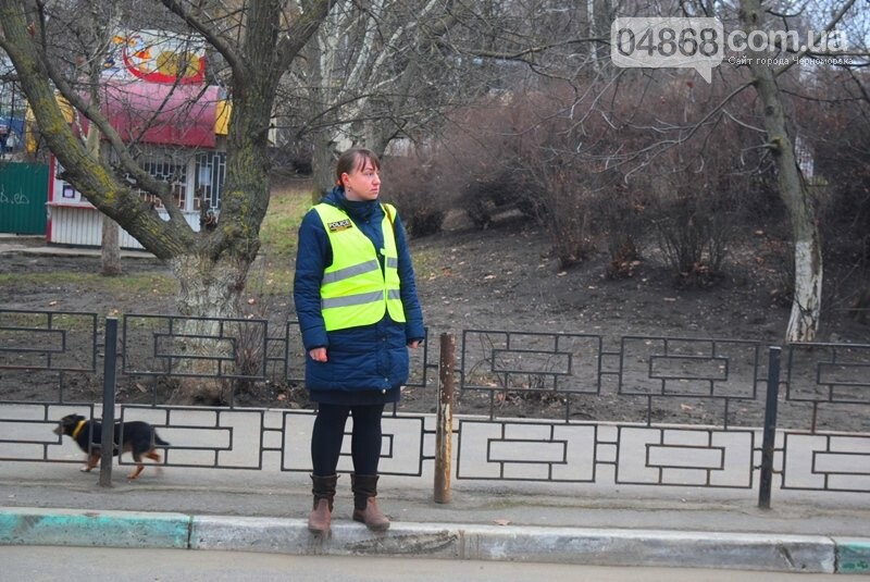 Насколько безопасны пешеходные переходы у школ Черноморска?, фото-27
