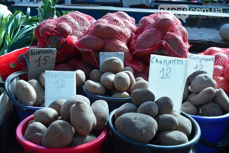 Что почём на зимних рынках Черноморска?, фото-30