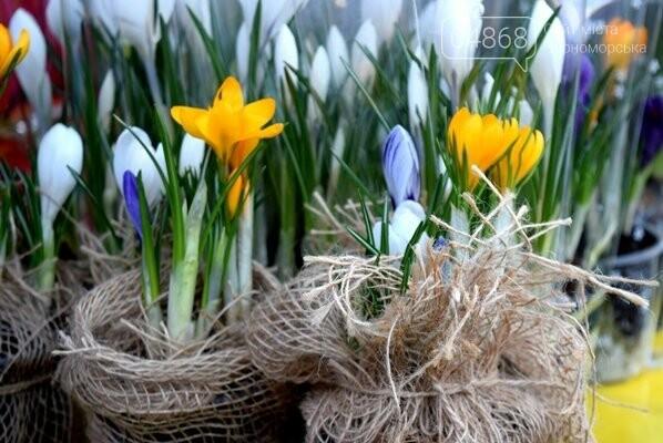 Весна: за что жители Черноморска могут получить штрафы?, фото-1