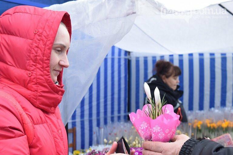 Весна: за что жители Черноморска могут получить штрафы?, фото-5