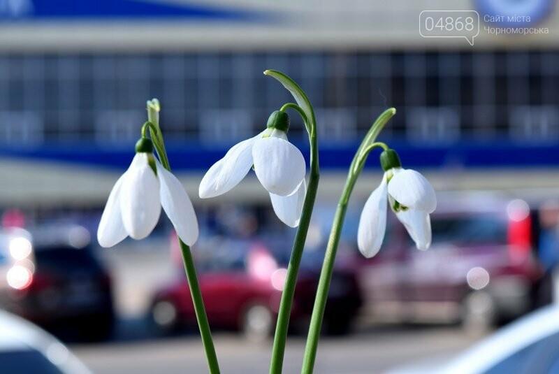 Весна: за что жители Черноморска могут получить штрафы?, фото-3