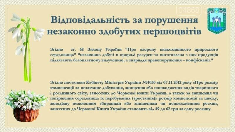Весна: за что жители Черноморска могут получить штрафы?, фото-11