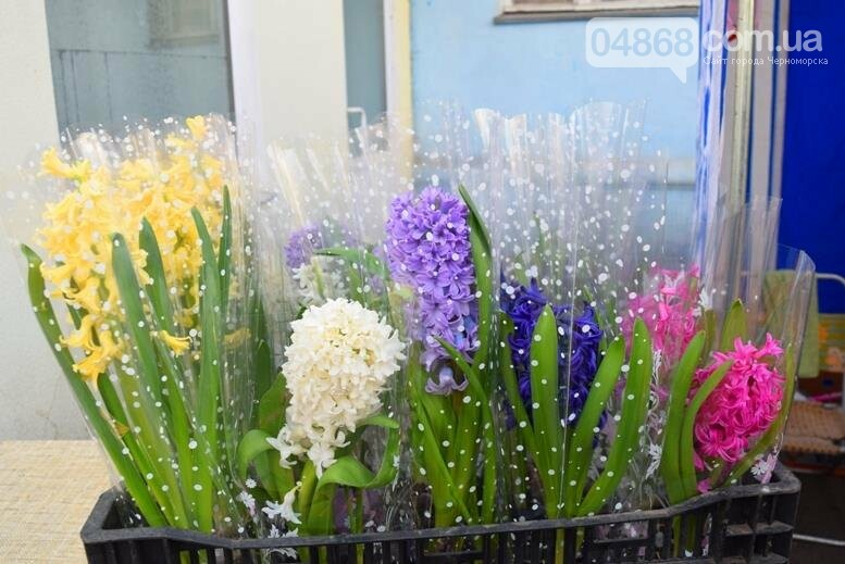 В Черноморске открылась весенняя цветочная ярмарка, фото-20
