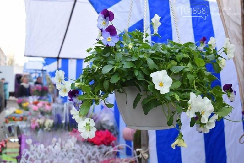 В Черноморске открылась весенняя цветочная ярмарка, фото-27