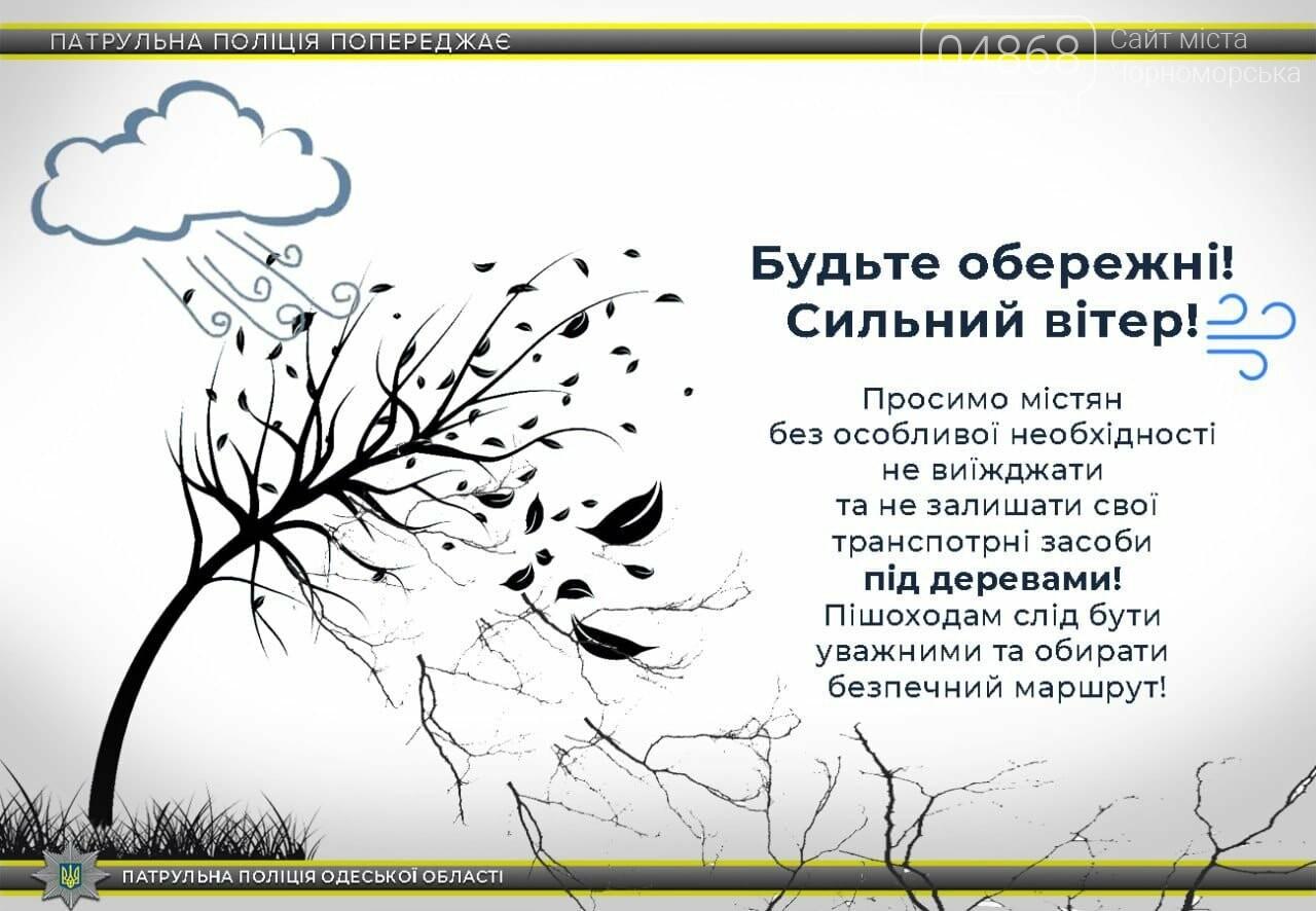 Спасатели предупреждают: в ближайшие три часа в Черноморске ожидается опасное усиление ветра, фото-1