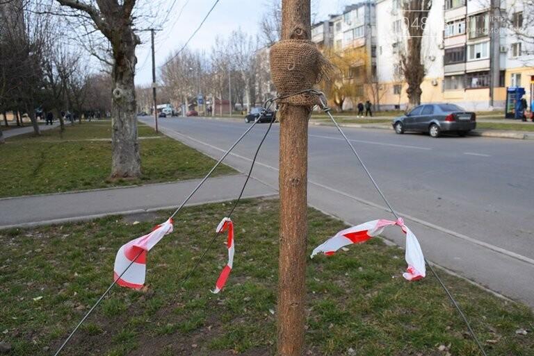 В Черноморске появится более 100 красавиц-катальп, фото-3