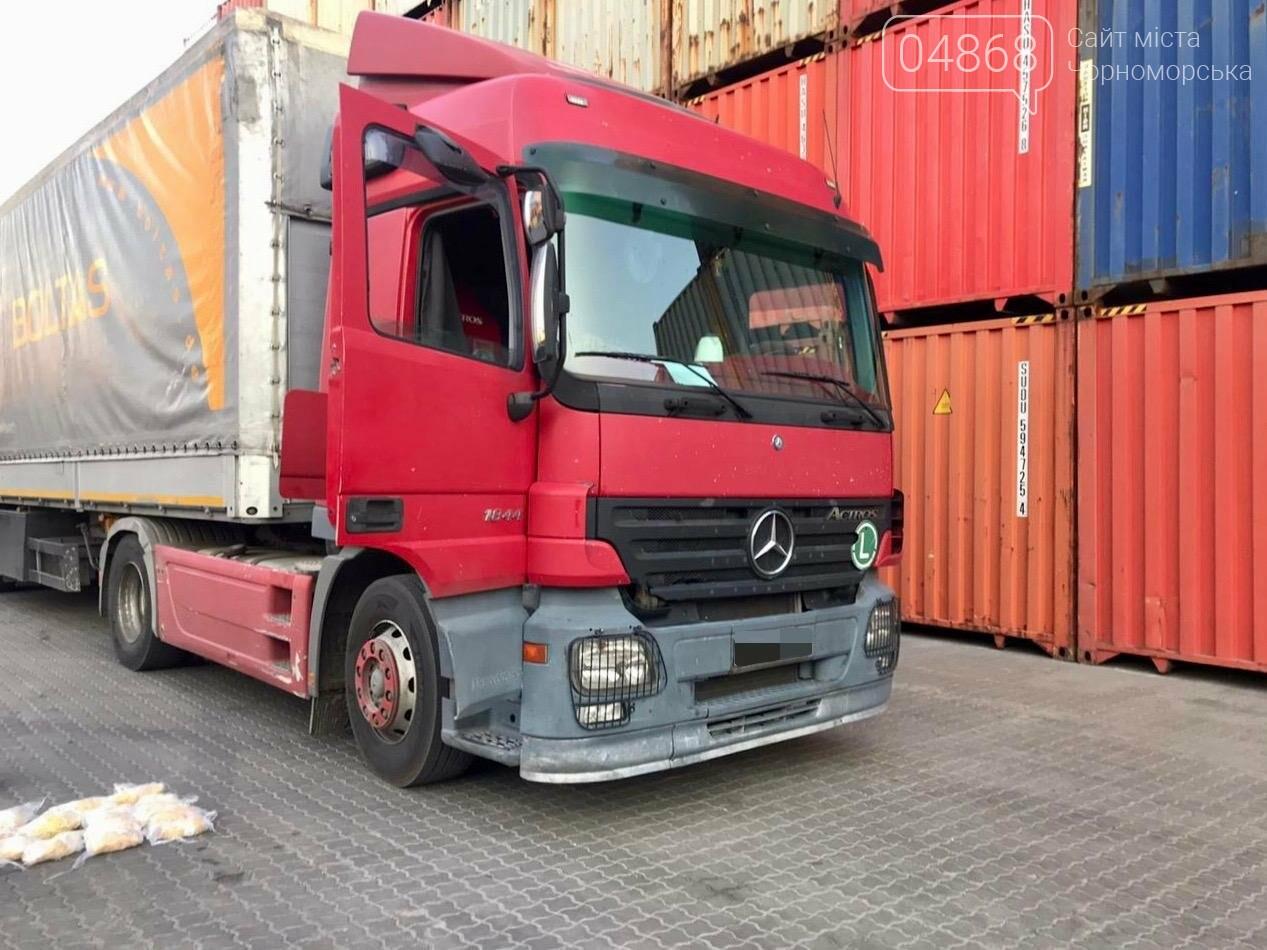 В Черноморском порту задержали «нашпигованный» янтарём грузовик, фото-1