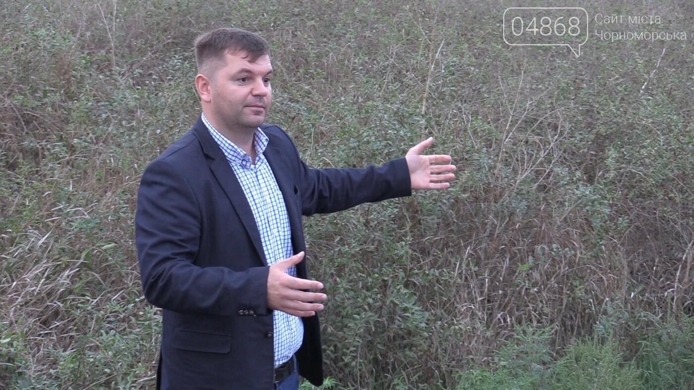 В Александровке планируют отремонтировать часть дорог до конца 2020 года (видео) , фото-6