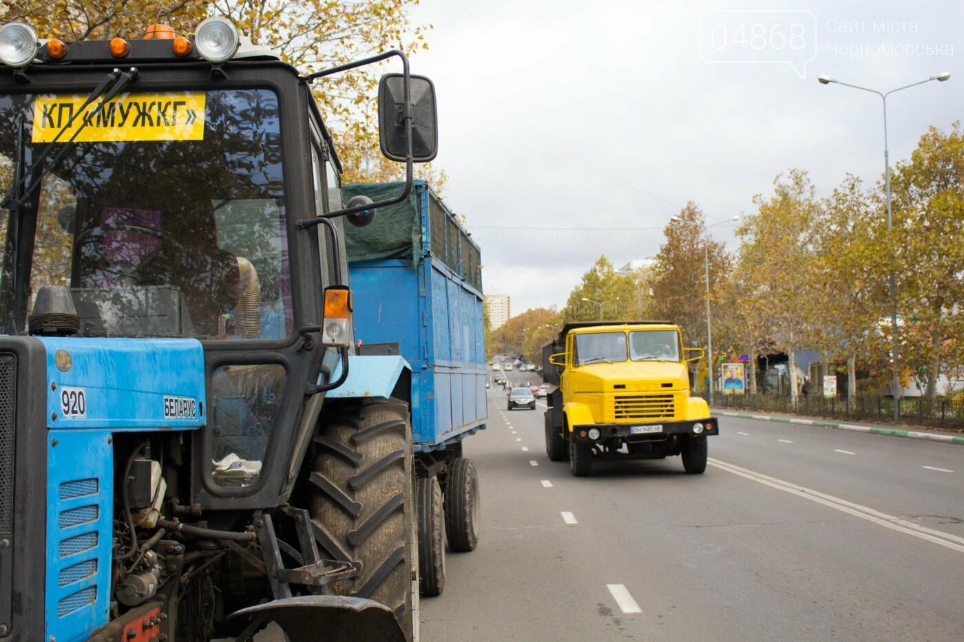 Как прошел общегородской субботник в Черноморске , фото-6