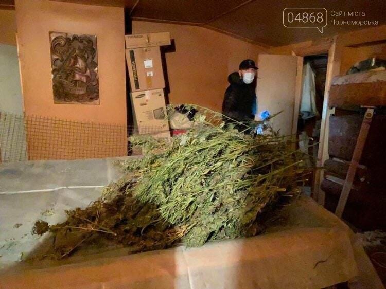 В Одесской области разоблачили нарколабораторию по изготовлению каннабиса и амфетамина, фото-9