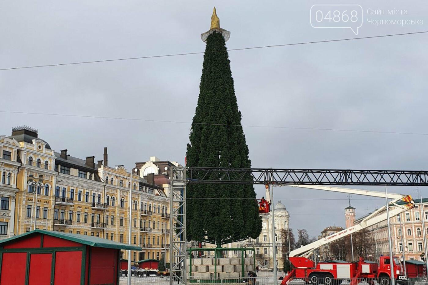 Черноморская компания украшает главную новогоднюю елку страны, фото-1