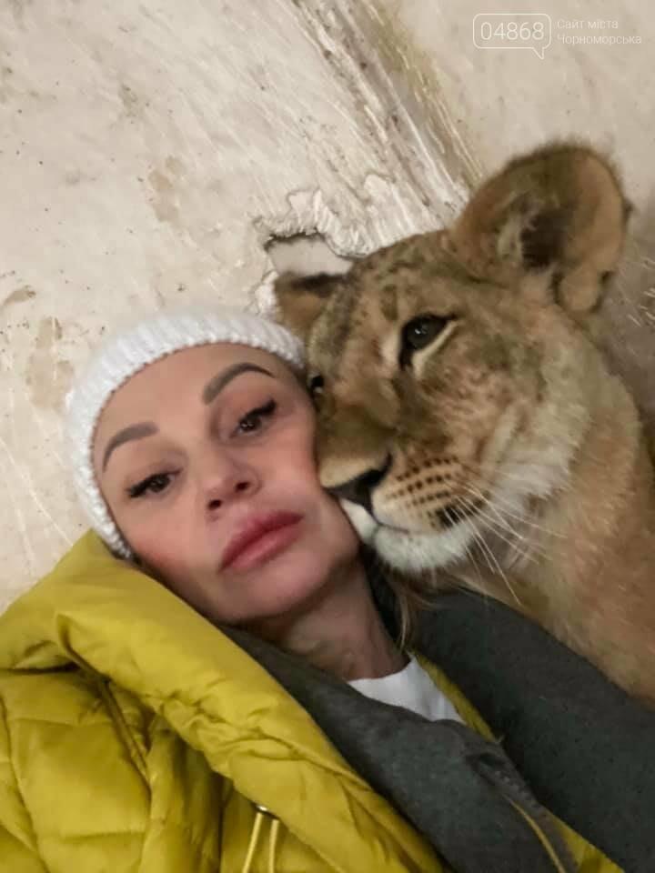 Знаменитый львёнок из одесского ночного клуба поедет домой в Африку , фото-3