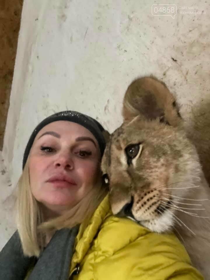 Знаменитый львёнок из одесского ночного клуба поедет домой в Африку , фото-7
