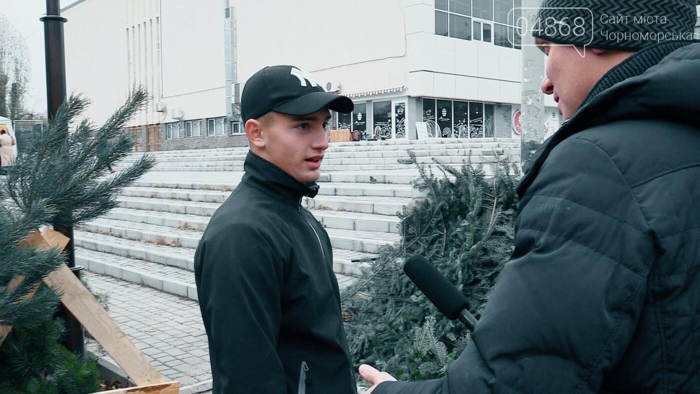 В Черноморске появились первые точки продажи ёлок (видео), фото-1