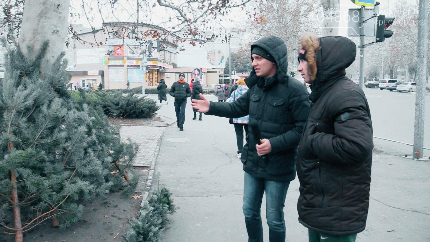 В Черноморске появились первые точки продажи ёлок (видео), фото-7