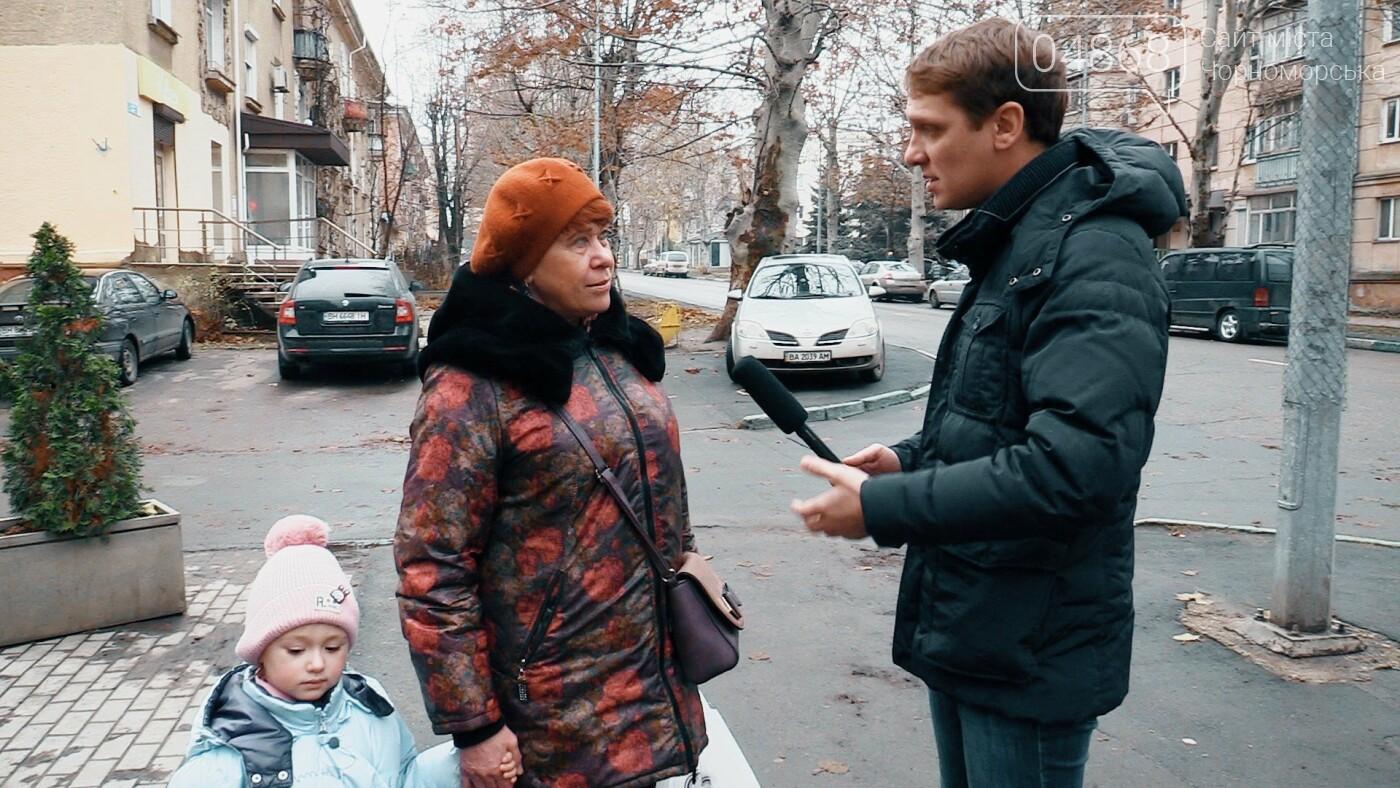 Бездомные животные Черноморска: как решить проблему (видео), фото-4