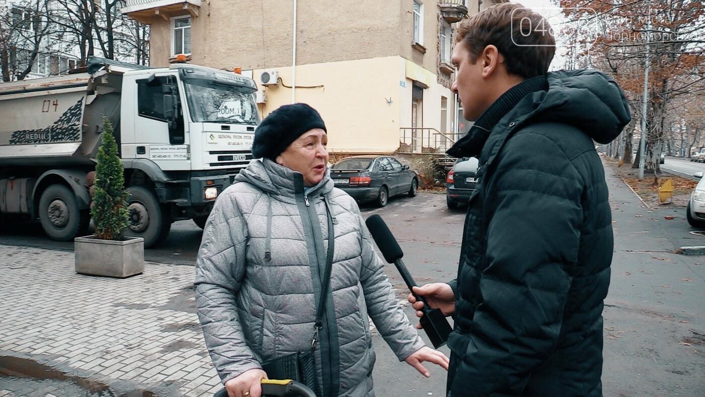 Бездомные животные Черноморска: как решить проблему (видео), фото-5