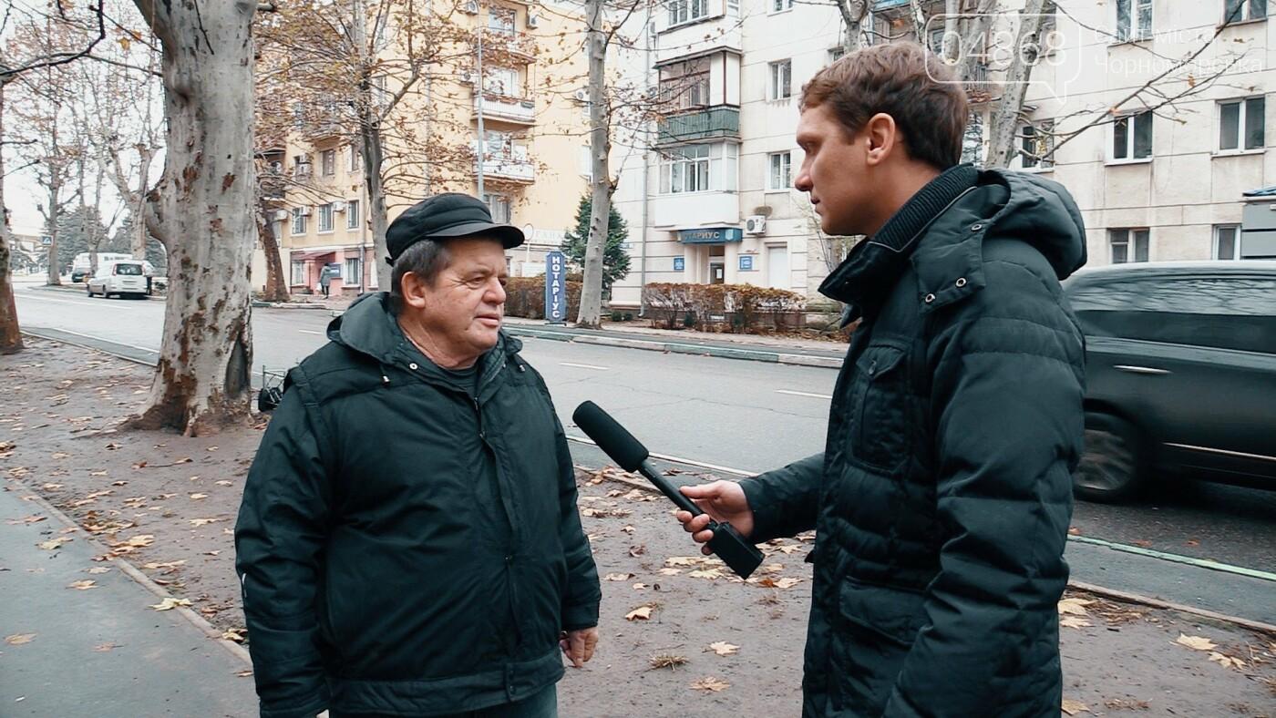 Бездомные животные Черноморска: как решить проблему (видео), фото-6