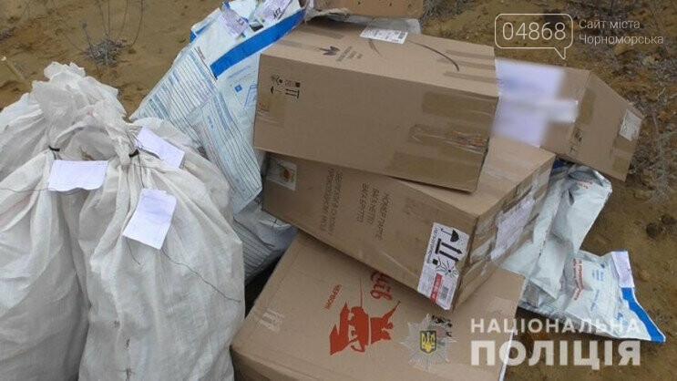 В Одесской области сожгли конфискованные наркотики, фото-3