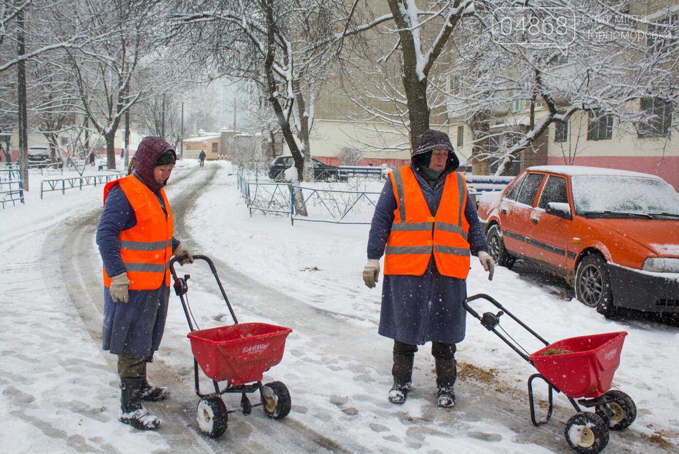 Выпало больше 10 см осадков: как в Черноморске снег убирали, фото-4