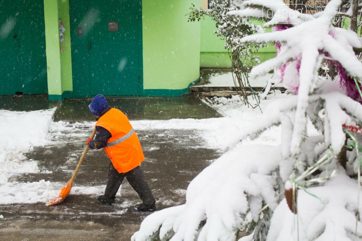 Выпало больше 10 см осадков: как в Черноморске снег убирали, фото-6