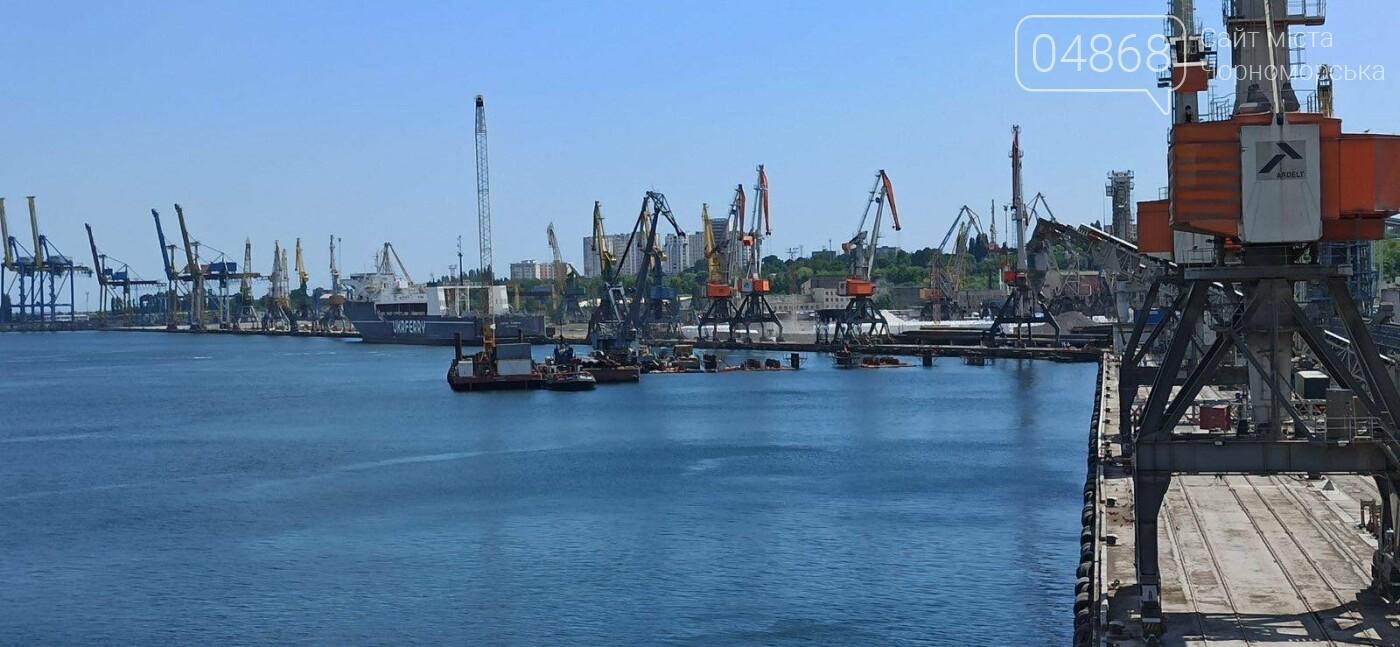 В Черноморске продолжаются работы по строительству двухстороннего пирса, фото-2