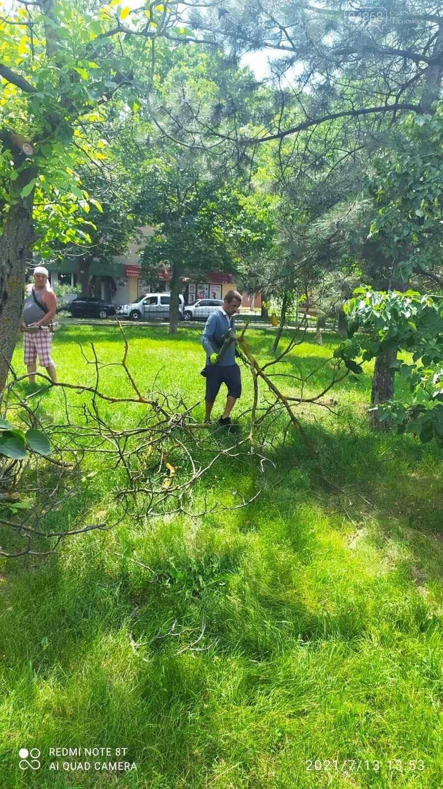 В Черноморске КП «Зеленхоз» продолжает работы по благоустройству города, фото-1