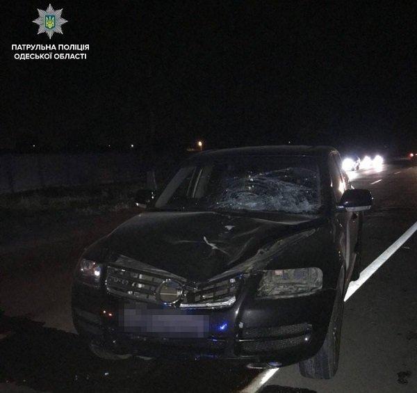 На трассе Одесса — Ильичёвск пешеход погиб под колёсами Volkswagen, фото-1