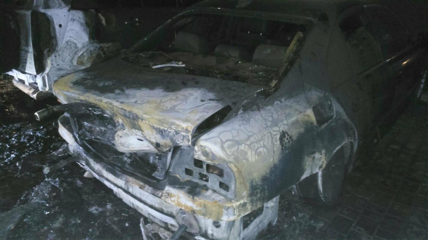Поджоги из Черноморска перекинулись на его окрестности (фото, видео), фото-6