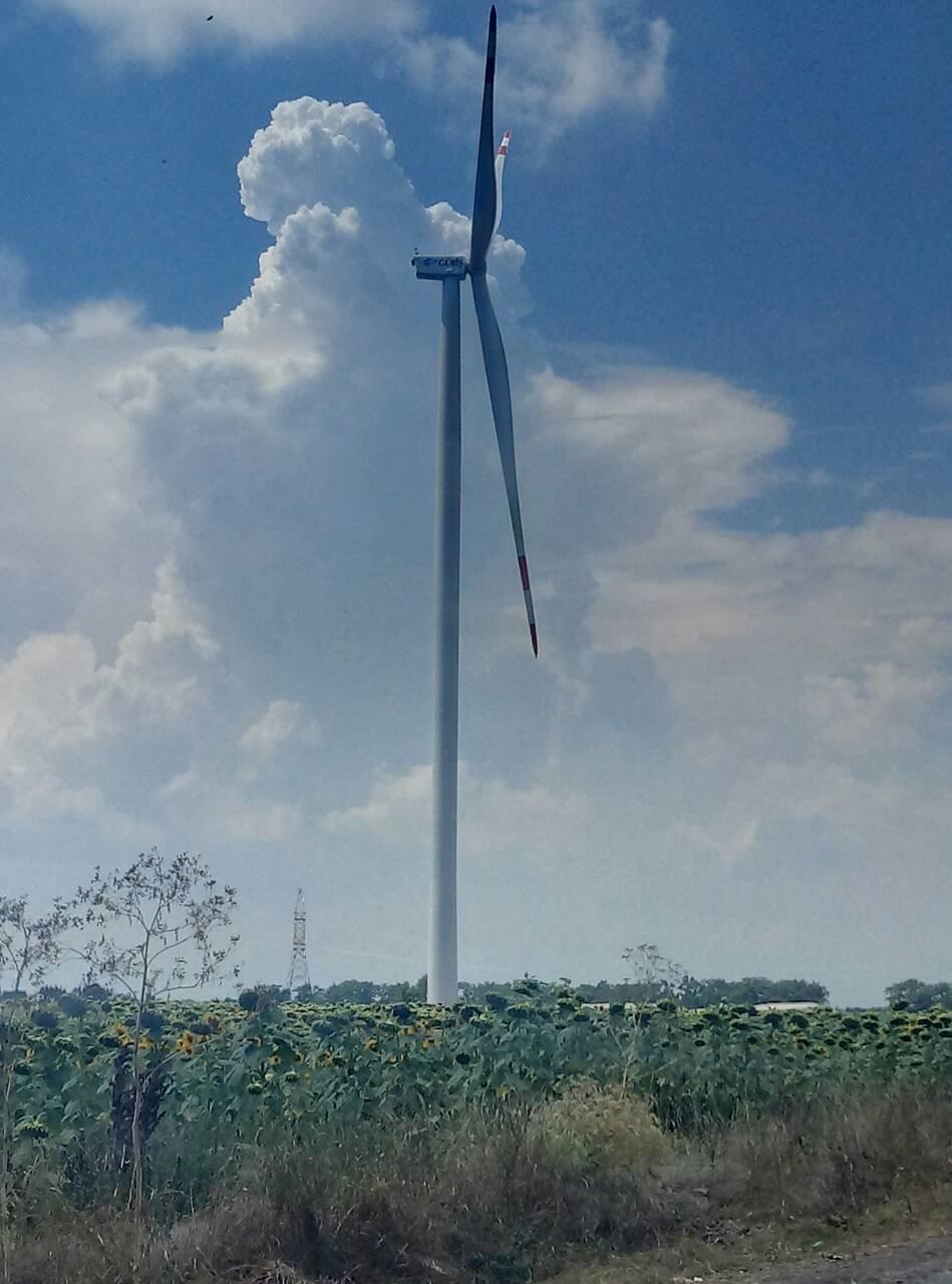 В предместье Черноморска установили альтернативные источники энергии   , фото-4