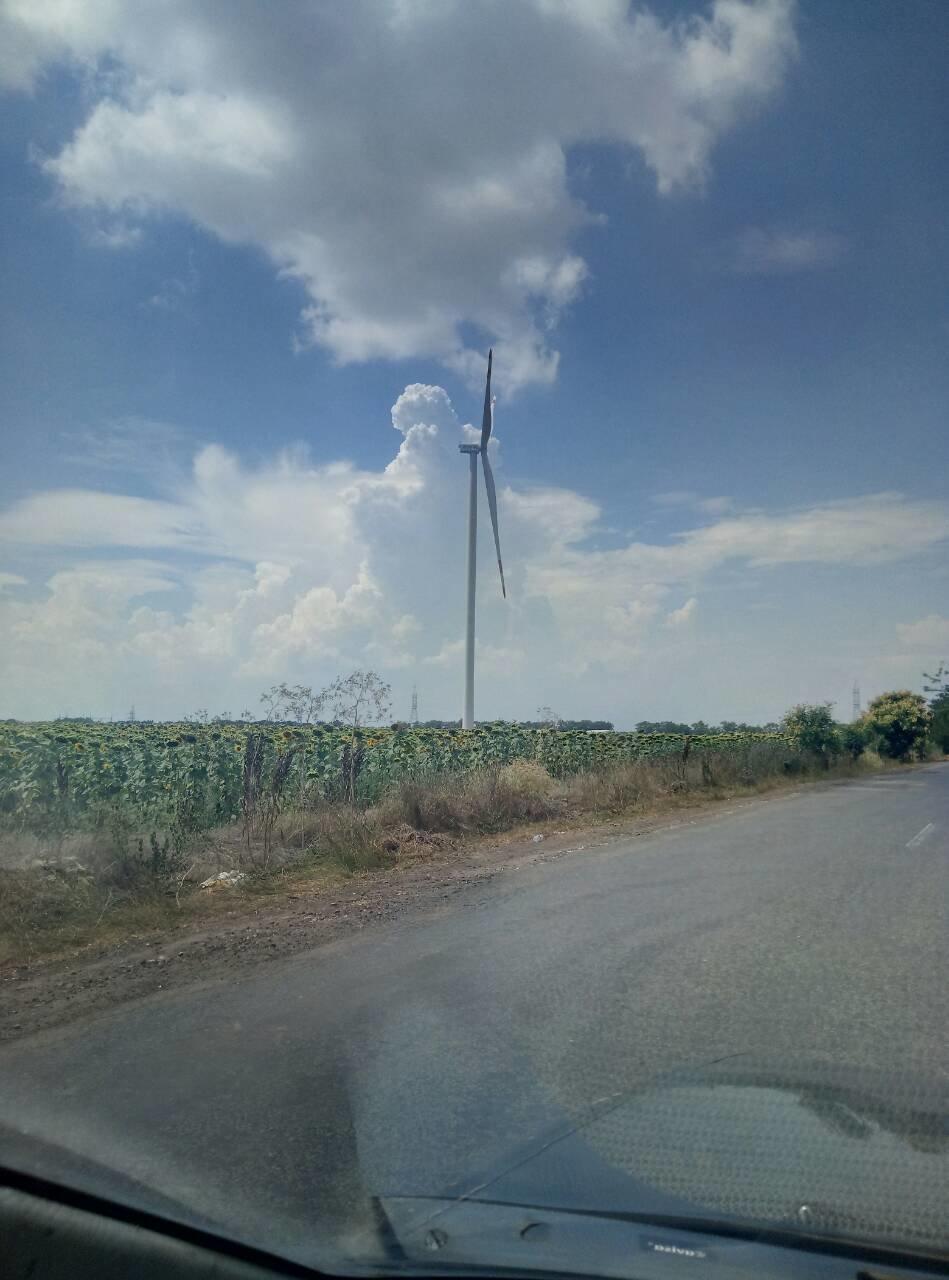 В предместье Черноморска установили альтернативные источники энергии   , фото-1
