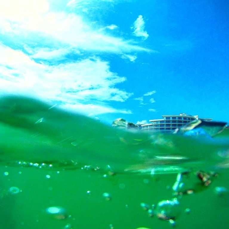 «Остановленные мгновения»: лучшие фотографии Черноморска начала августа, фото-10