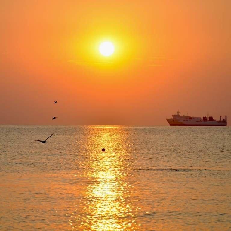 «Остановленные мгновения»: лучшие фотографии Черноморска начала августа, фото-7