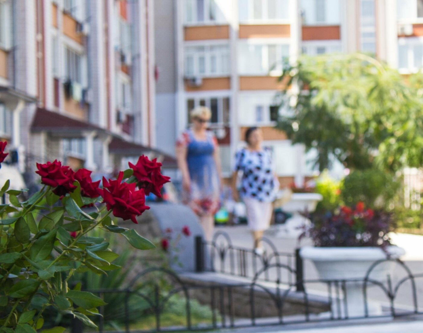 В День цветов Черноморск узнает победителей конкурса «Двор лучшего благоустройства», фото-5