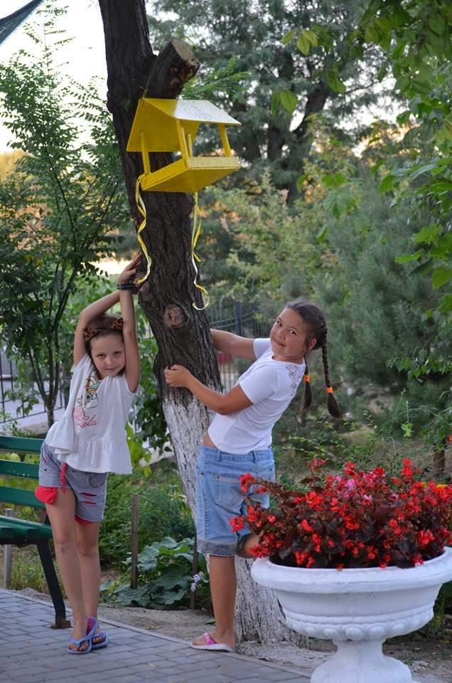 В День цветов Черноморск узнает победителей конкурса «Двор лучшего благоустройства», фото-2
