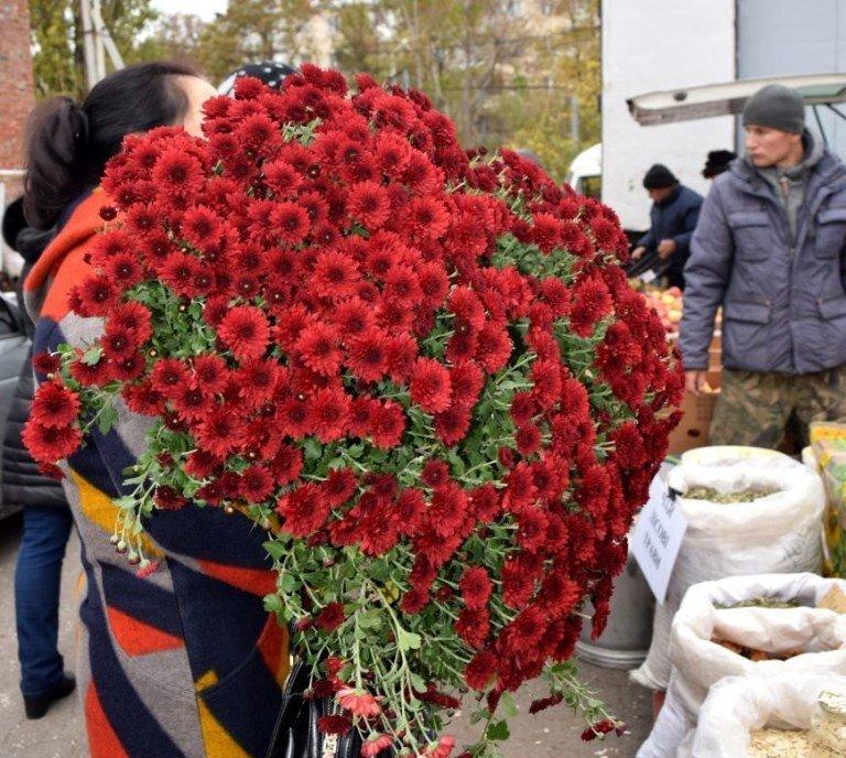Завтра в Черноморске откроется очередная осенняя ярмарка, фото-2