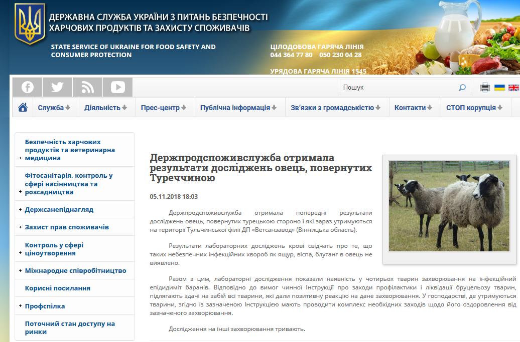 Печальный конец истории овец, задержанных в МТП «Черноморск», фото-1