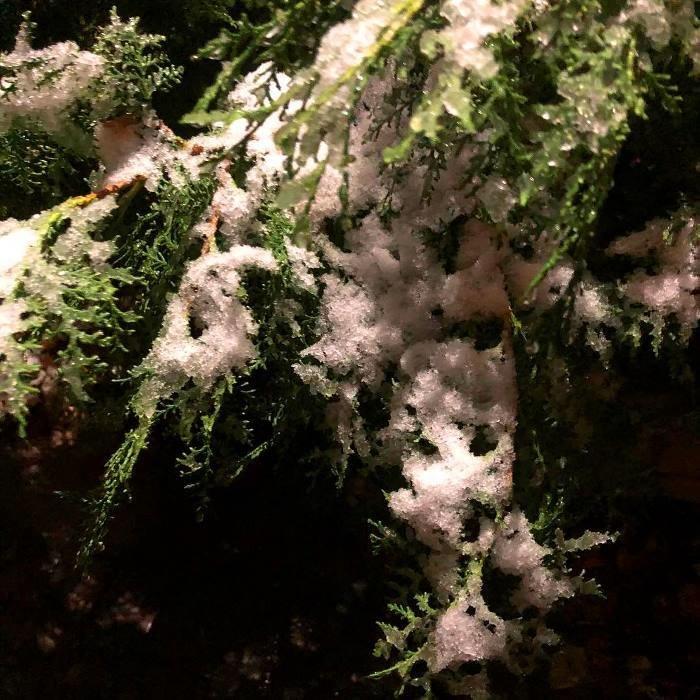 С первым снегом, Черноморск!, фото-33