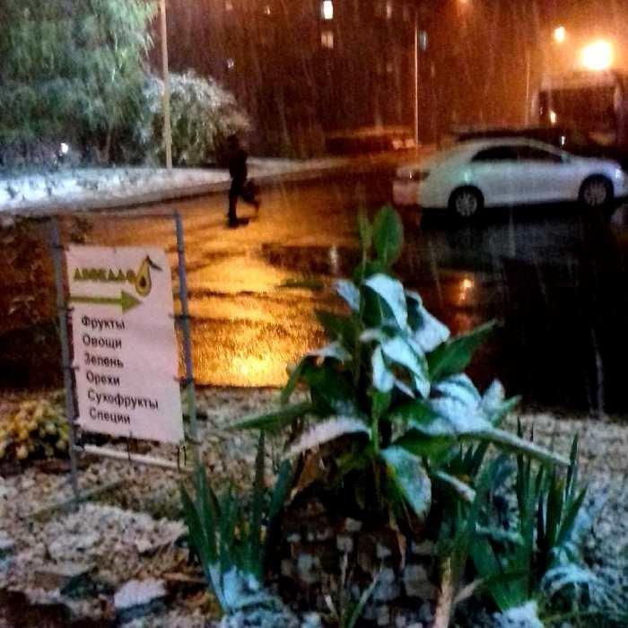 С первым снегом, Черноморск!, фото-34