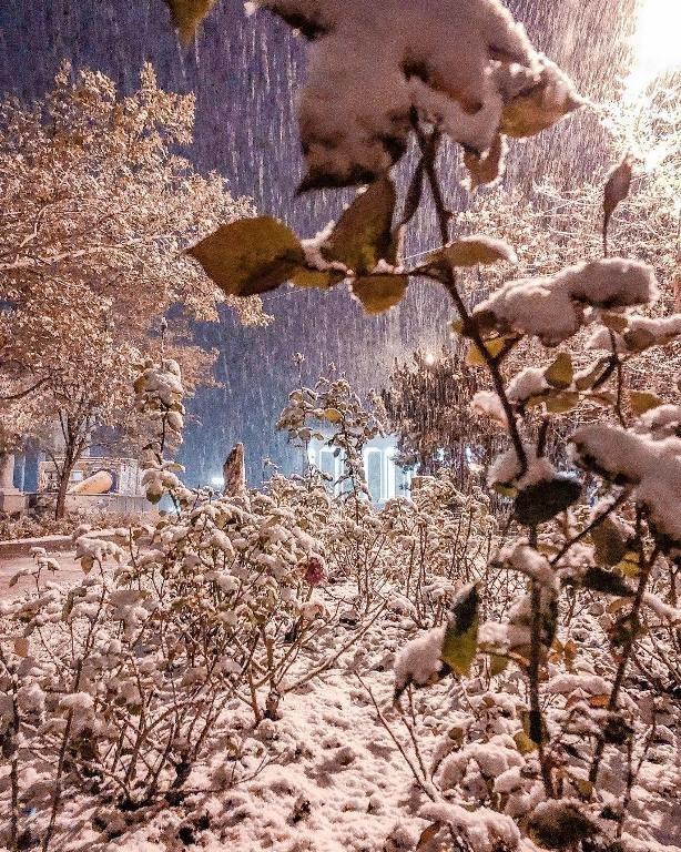 С первым снегом, Черноморск!, фото-1