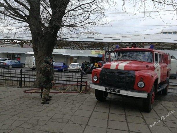 Пожар в Одесском зоопарке, фото-1