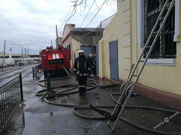 Пожар в Одесском зоопарке, фото-2